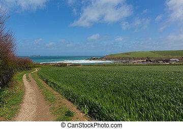 Coast path Newtrain Bay Cornwall