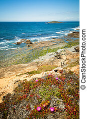 coast portugal , rota vicentina walking trail