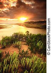 Coastal Colour - Beautiful sunrise on the South Australian...