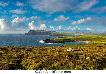 Coastal Landscape in Ireland