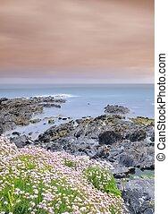 Coastal landscape in spring.