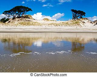Coastal sand dune reflections on beach at low tide