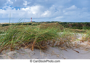Coastal scene on Amrum island, Germany. In the background the lighthouse of Amrum
