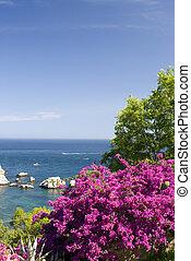 coastal scene with flowers sicily - sicily coast scene with ...