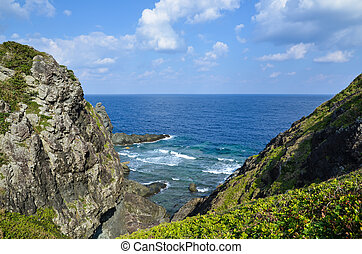 Coastal steep - Cliffs at the tropical coast of the japanese...