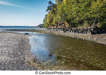 Coastal Stream