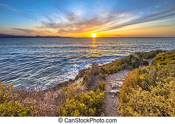 Coastal vegetation Cap Corse - Walking trail through Coastal...