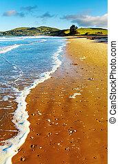 Coastal view, New Zealand - Coastal view, Pacific coast of ...