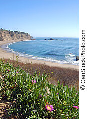 Coastal Views - California coast in springtime