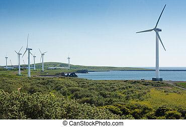 Coastal wind farm used to harness renewable wind power into ...