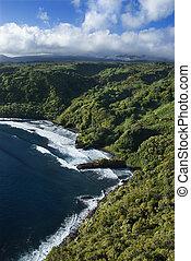 coastline., ハワイ