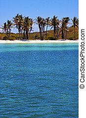 coastline and   isla contoy  mexico