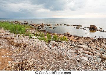 Baltic Sea - Coastline of Baltic Sea. Estonia, Europe