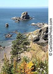 coastline., parque, estado, ecola, oregón