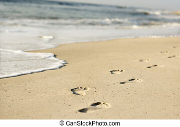 Coastline with footprints. - Scenic sandy coastline with ...