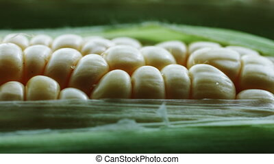 Cob of young corn wrapped in green leaves.