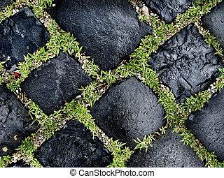 cobbled road close up - cobbles close up