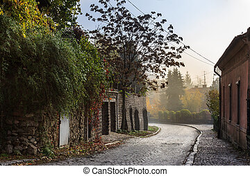 cobbled street in old town - the old cobbled street of the...