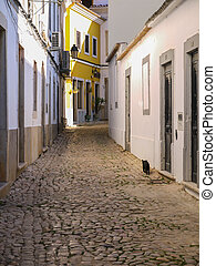 Cobbled street in Portuguese town