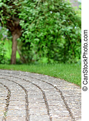 Cobblestone path in the garden with tree in background