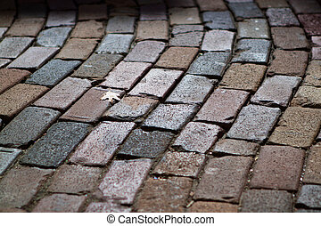 Close-in image of a cobblestone street in Orlando, Florida. The image shows details of the bricks and includes a single oak leaf in the frame.