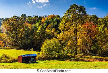 cobertizo, condado, árboles, pennsylvania., otoño, york, pequeño, rural