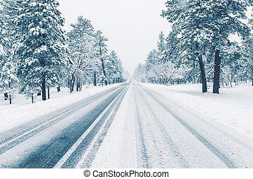 coberto, estrada, gelo inverno