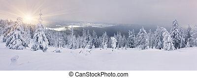 coberto, montanhas, neve, árvores, geada