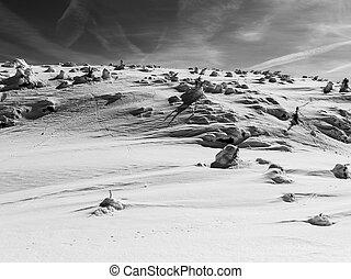 coberto, terreno, neve, fundo, inverno