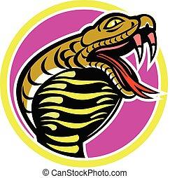 cobra-snake-HEAD-CIRC-MASCOT