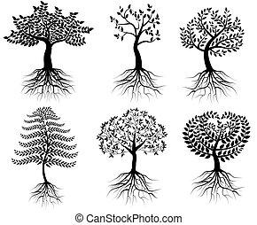 cobrança, de, árvores, com, raizes