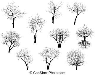 cobrança, de, árvores, silhuetas
