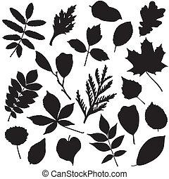 cobrança, de, folhas, silhuetas