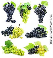 cobrança, de, maduro, fruta, uva, cacho, isolado