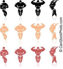 cobrança, de, saudável, macho, icons.
