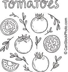 cobrança, ilustração, mão, vetorial, sketched, desenhado, tomates