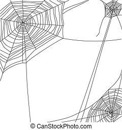 Cobweb - spider web on white background