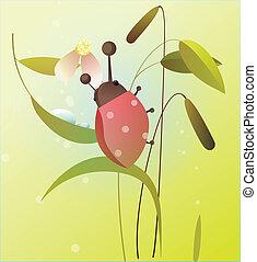 coccinella, fiore