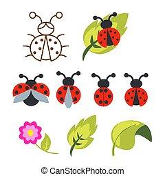coccinella, set, contorno, clipart, foglie, bug., verde