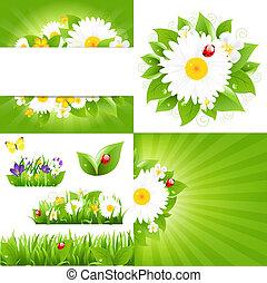 coccinelle, ensemble, arrière-plans, fleur