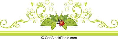 coccinelle, feuilles, frontière