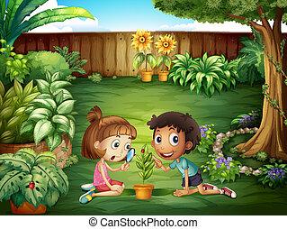 coccinelle, gosses, yard, étudier, deux, adorable