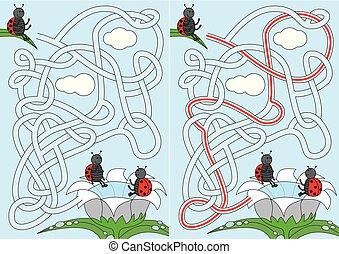 coccinelle, labyrinthe