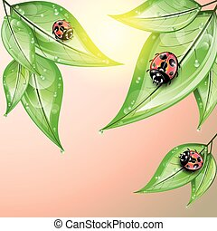 coccinelle, verde, leaves., rosso