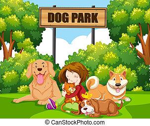 coccolare, ragazza, parco