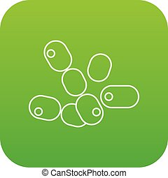 Coccus bacilli icon green vector isolated on white...