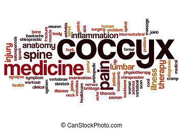 Coccyx word cloud concept