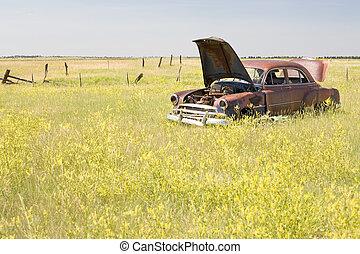 coche abandonado, en, campo