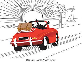 coche, relajante, vacaciones