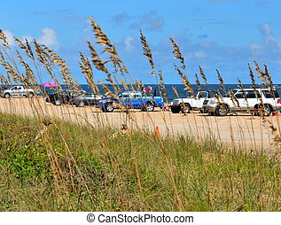 coches, estacionado, en la playa